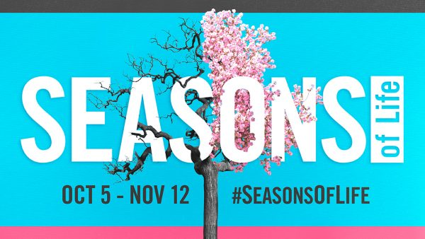 Seasons Week 4 - A Season of Temptation Image